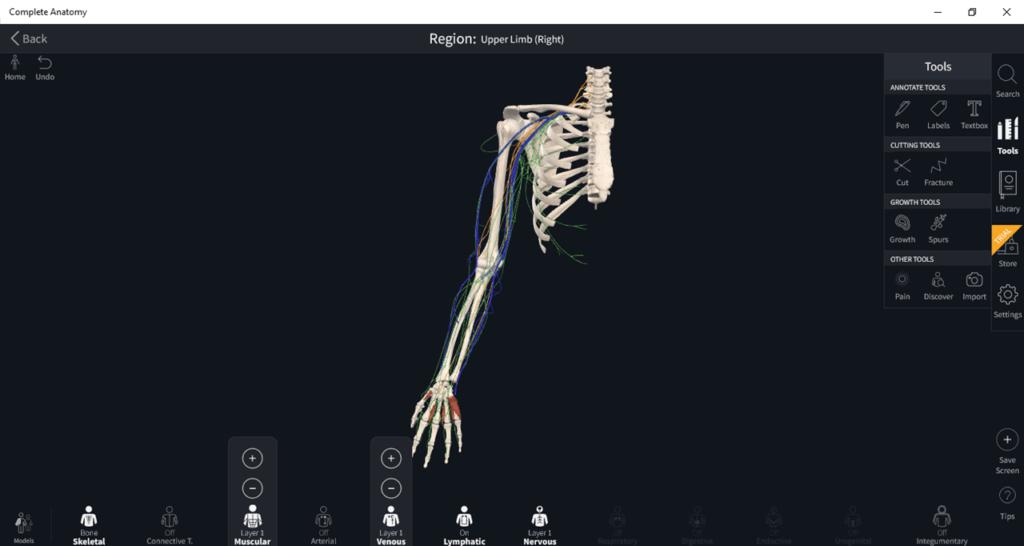 Complete Anatomy Системы