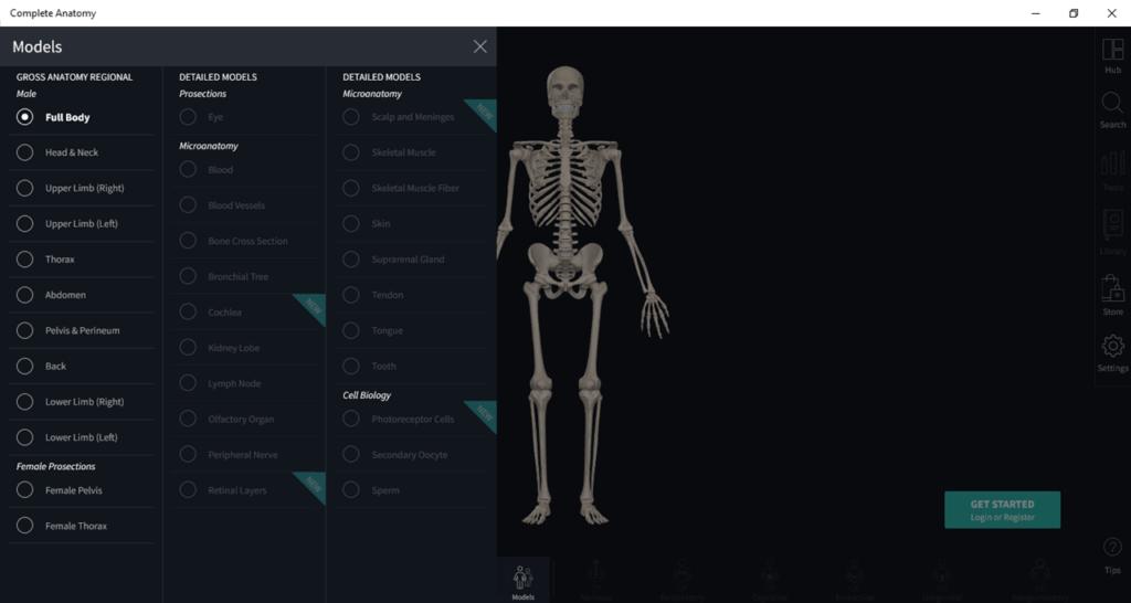 Complete Anatomy Скелет