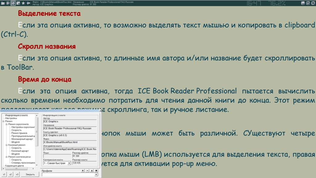 ICE Book Reader Professional Настройки