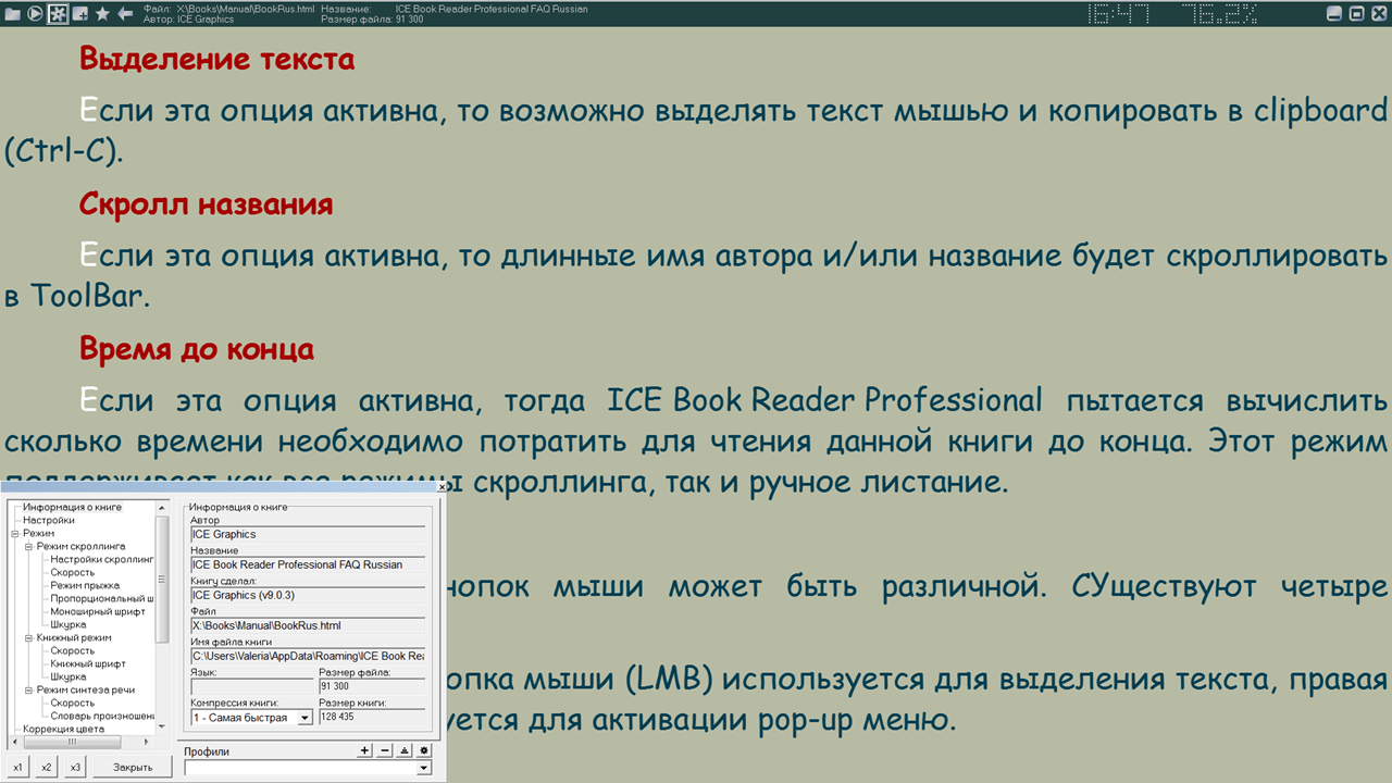 ICE Book Reader Professional Настройки