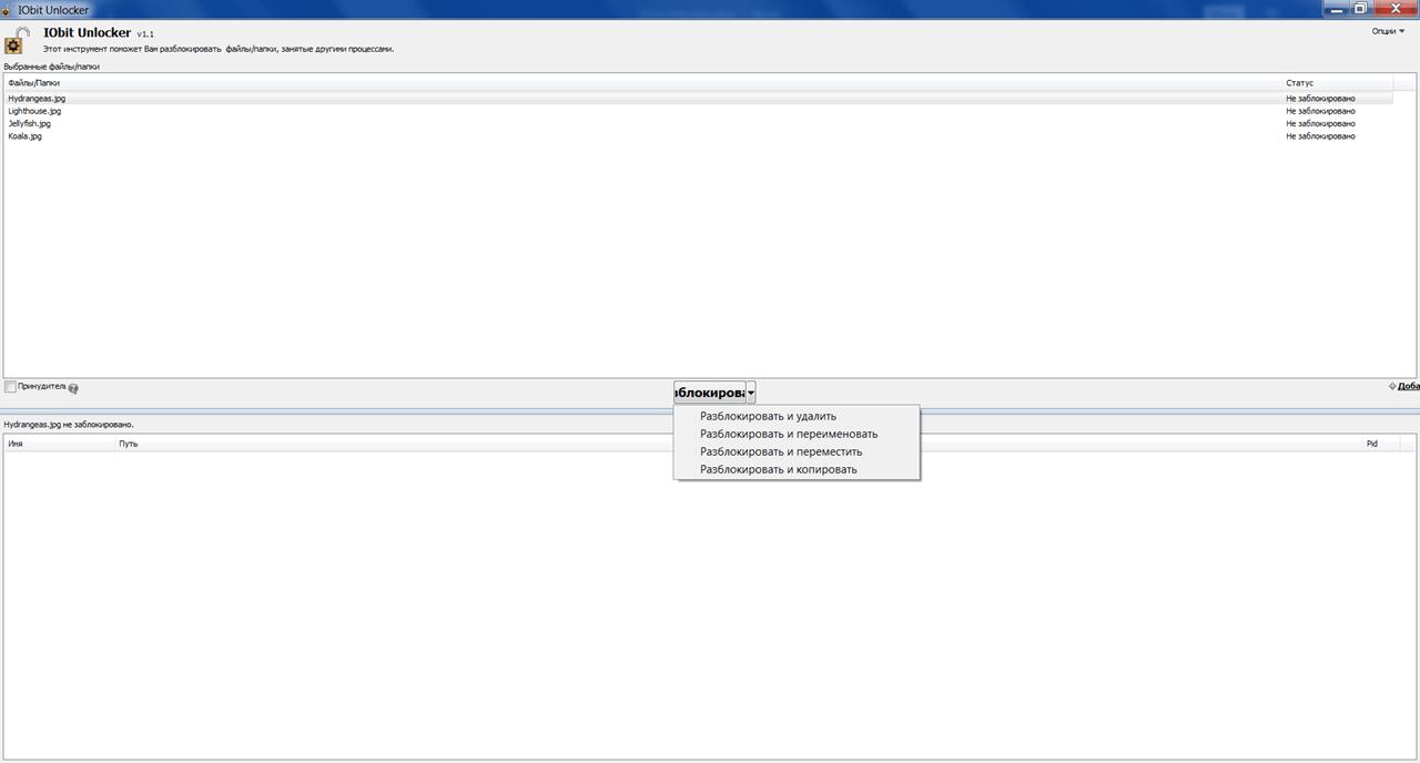 IObit Unlocker Файлы