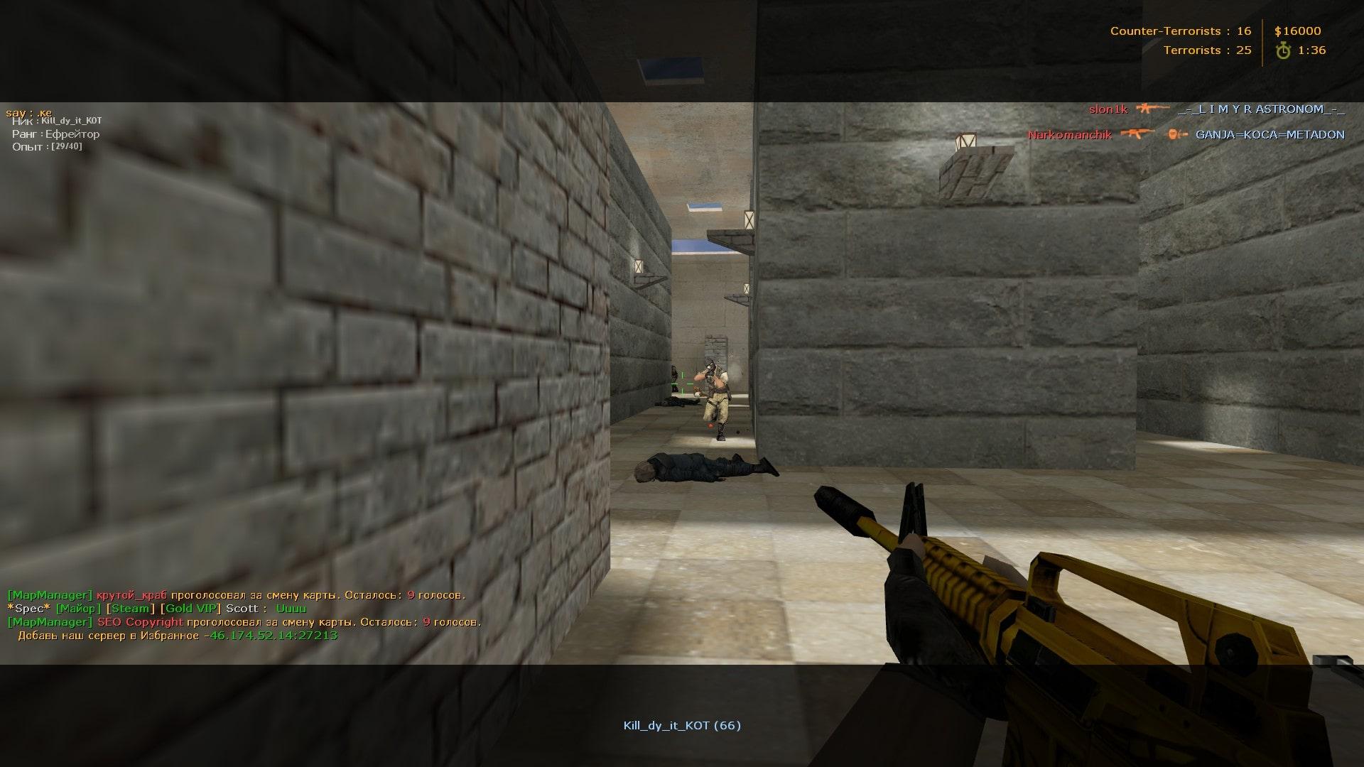 SteamID Changer В онлайн игре