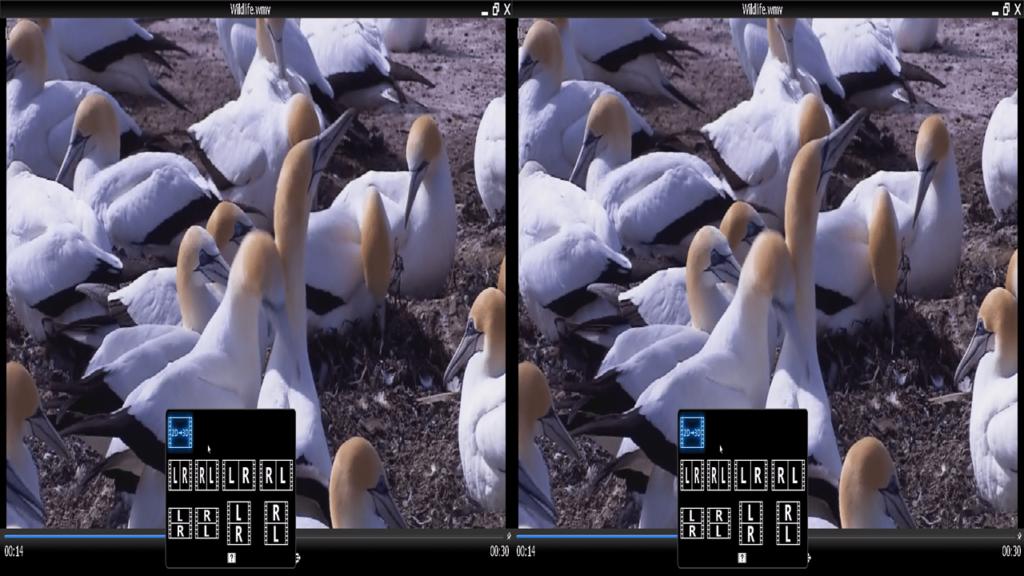 TriDef 3D Видео