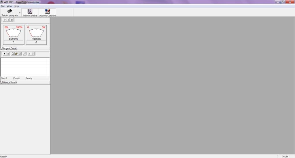 WPE Pro Главное окно